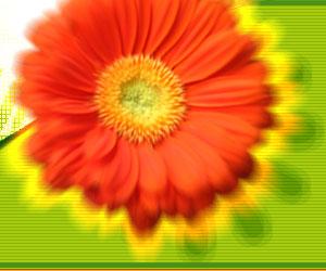 Энергетическая защита - Биоэнергетика - Магия - Статьи - Прекрасный новый мир